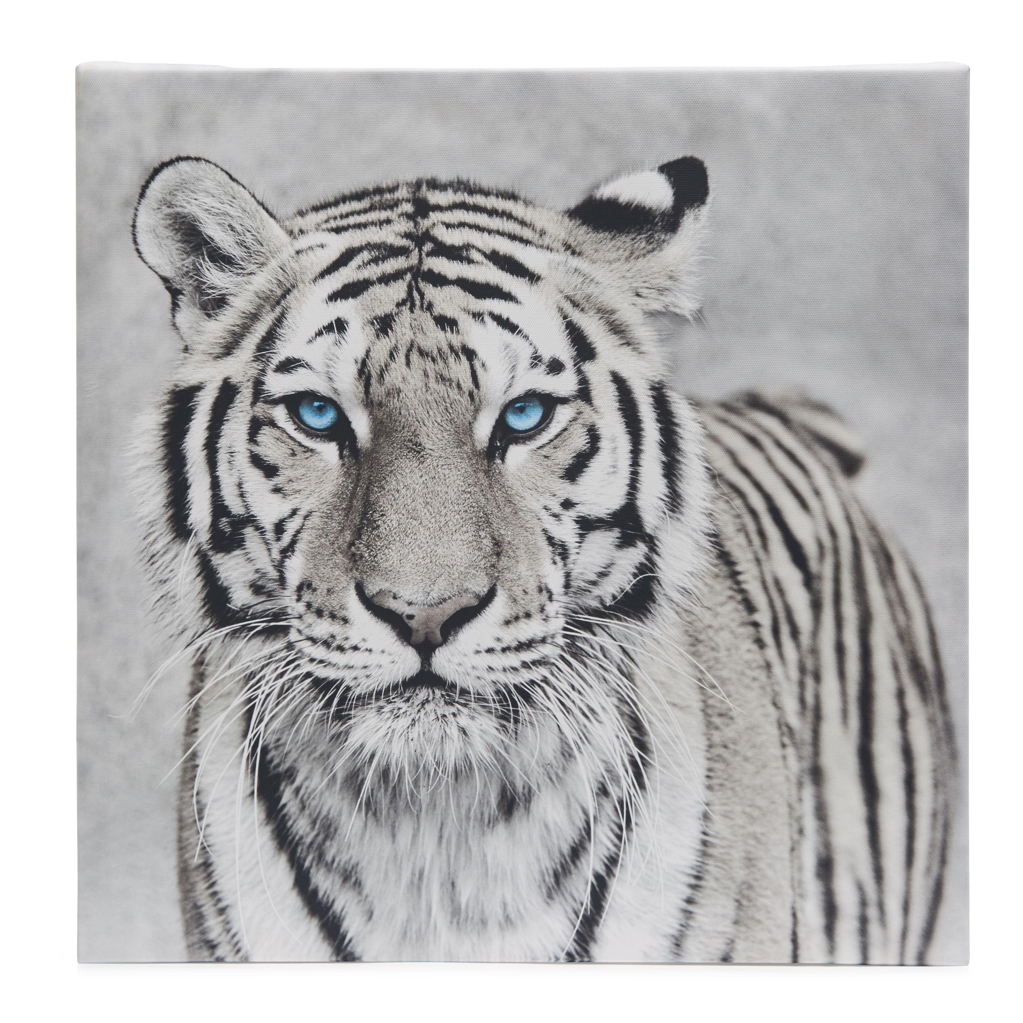 Tiger black white canvas w450mm h450mm departments diy at bq