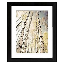 Autumn Trees Black Framed Art (W)540mm (H)440mm