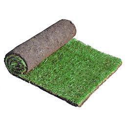 Lawn turf (W)610mm (L)1370mm, Pack of 20