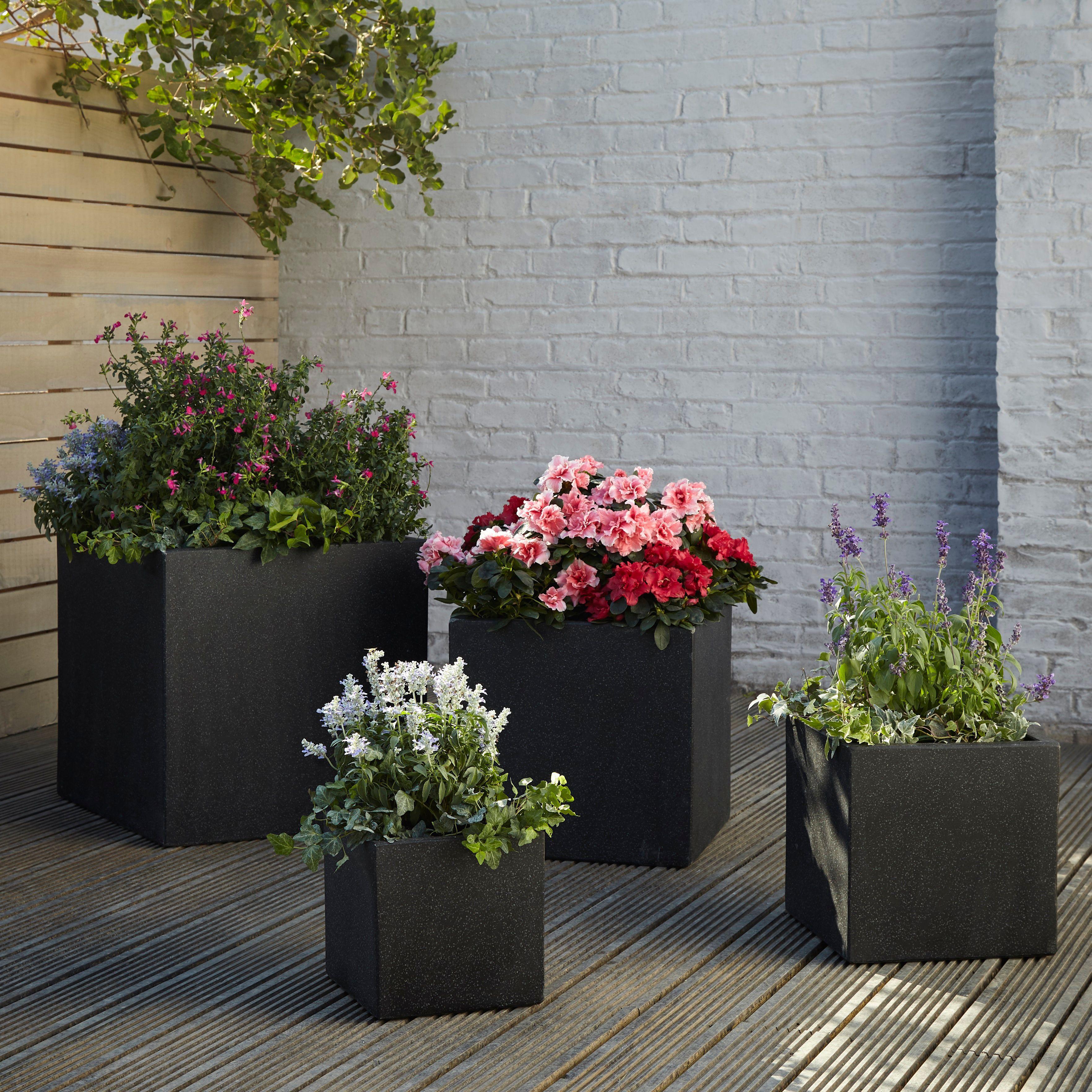 گیاهان در محوطه سازی باغ کوچک