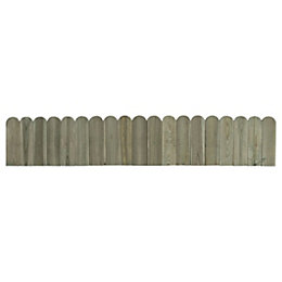 Blooma Pine Lollypop Edge Roll Pack of 1