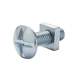 M6 Roofing bolt & square nut (L) 20mm,