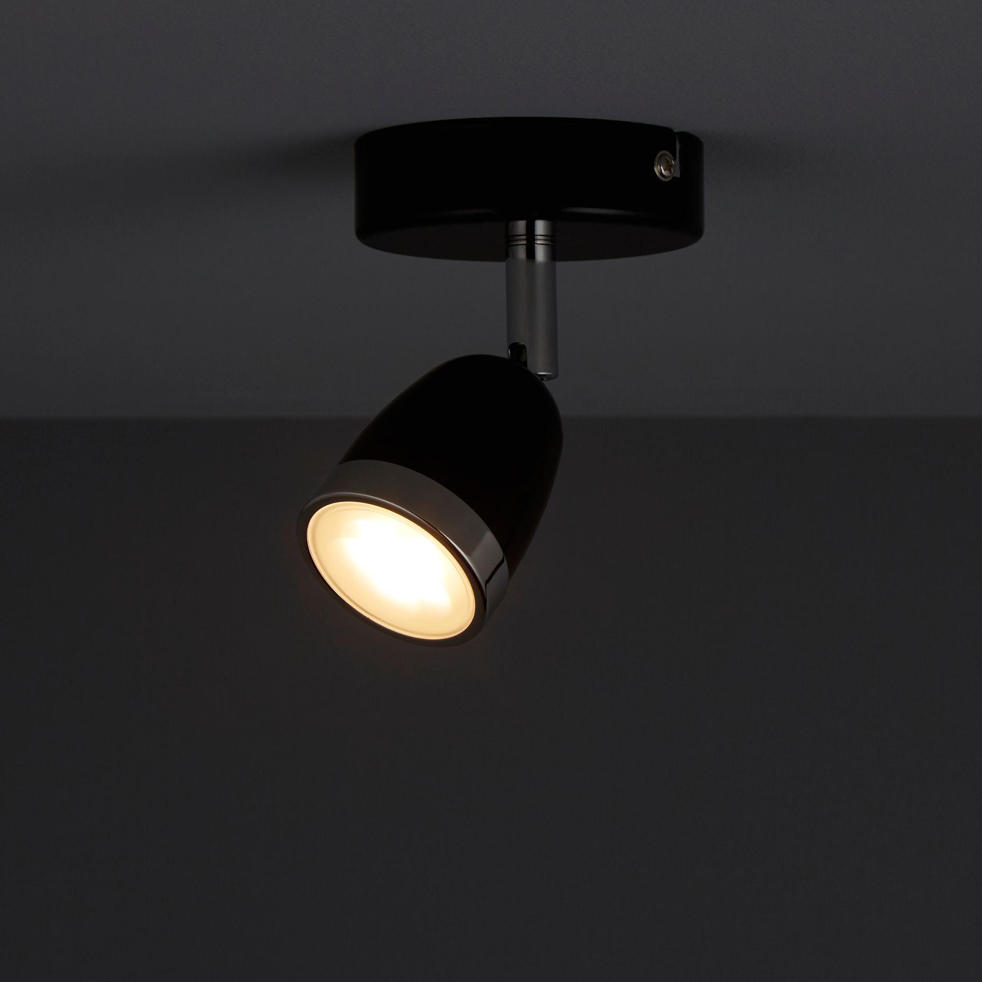 Apheliotes Black Spotlight