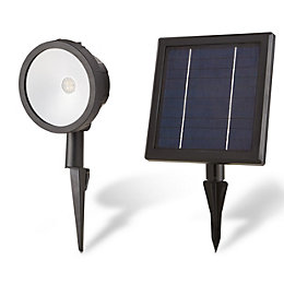 Blooma Poplar Black Powder coated Solar powered LED