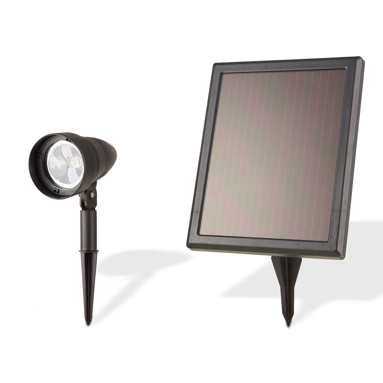 Solar Lights B Q: Blooma Richey Black Solar Powered LED Spike Light, Pack Of