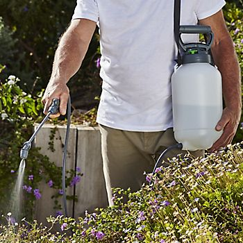 Man using Verve Hand Pump Sprayer 5L