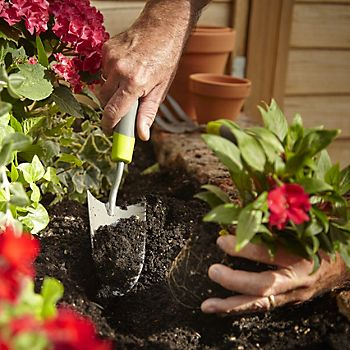 Gardener using a Verve trowel to plant bedding plants