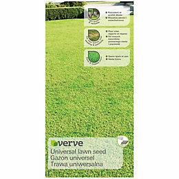 Verve Lawn Seed 10kg