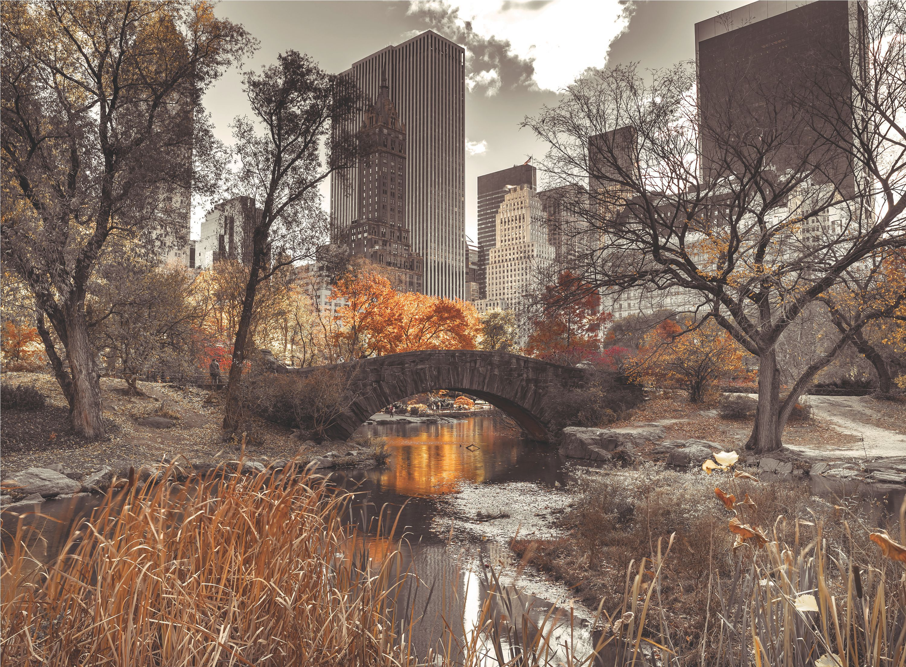 Central Park Wallpaper Mural Departments Diy At B Amp Q