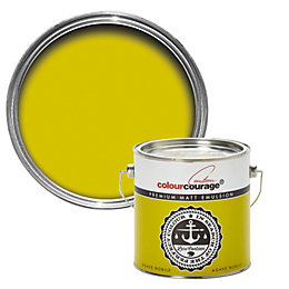 colourcourage Agave nobile Matt Emulsion paint 2.5L
