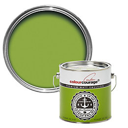 colourcourage Pomme de pin Matt Emulsion paint 2.5