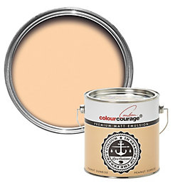 colourcourage Peanut sunrise Matt Emulsion paint 2.5L