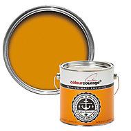 colourcourage Kumquat arancio Matt Emulsion paint 2.5L