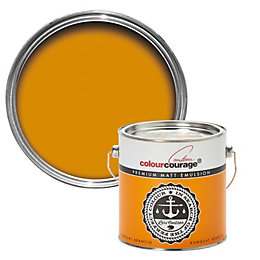 colourcourage Kumquat arancio Matt Emulsion paint 2.5L