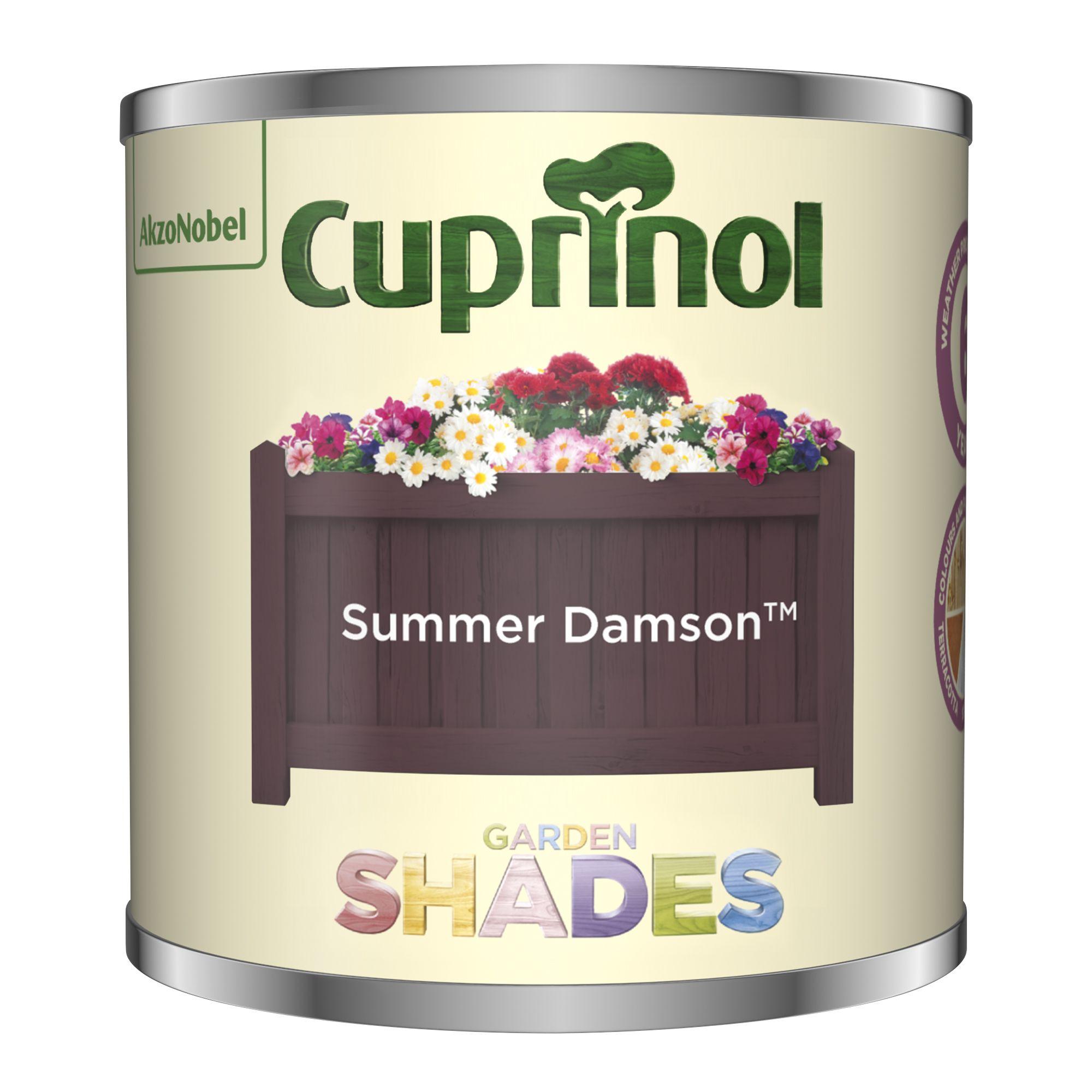 Cuprinol Garden Shades Summer Damson Matt Wood Paint 125ml Tester Pot Departments Diy At B Q