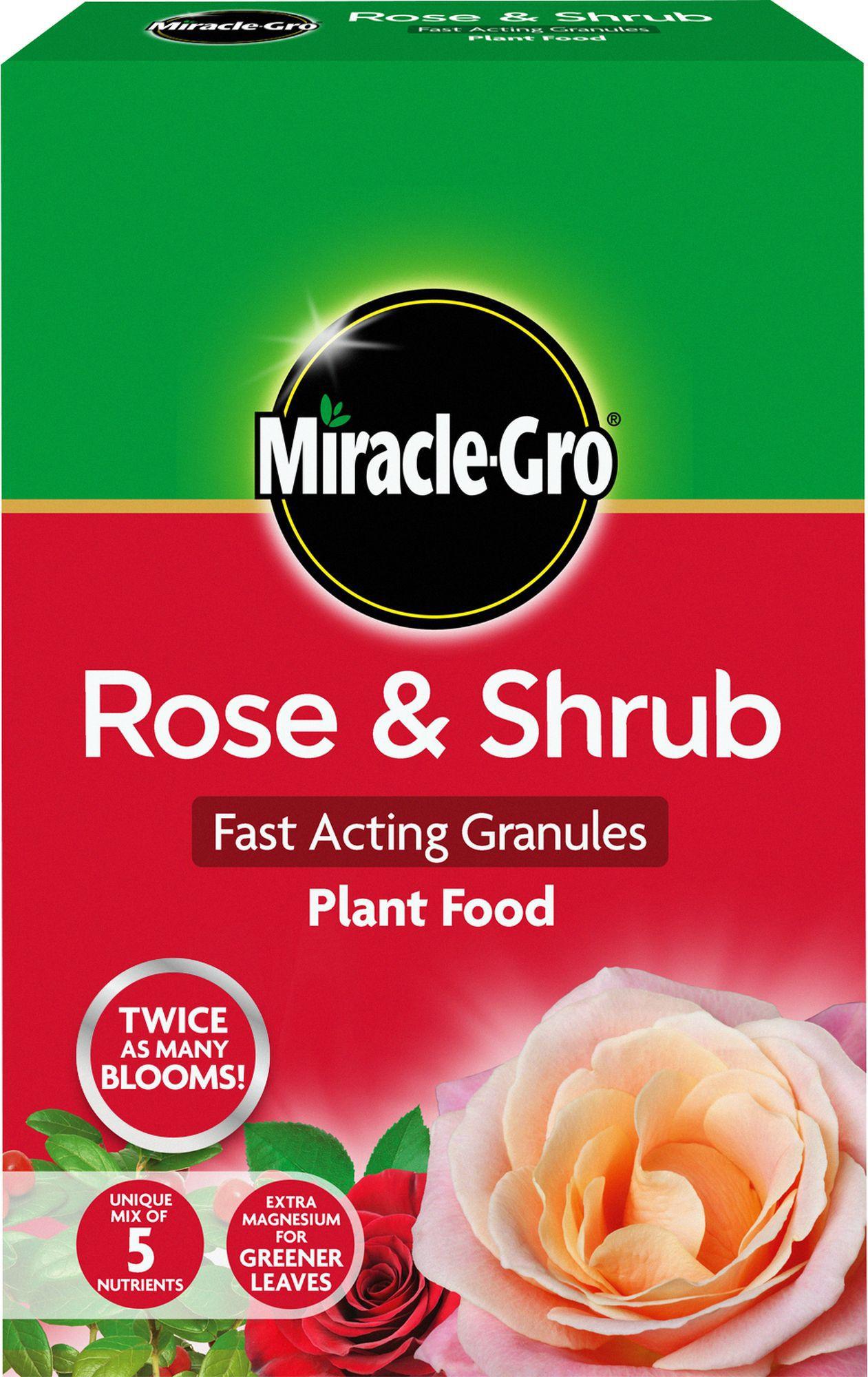 Miracle gro rose shrub granular plant food 3kg for Diy rose food