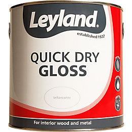 Leyland Interior White Gloss Paint 2.5L