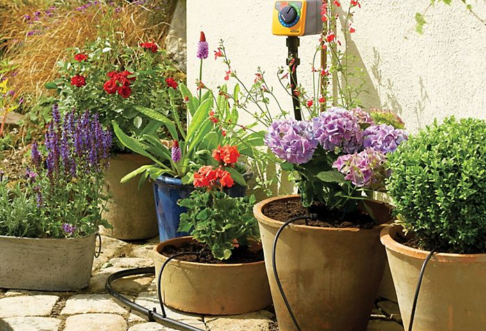 """Hozelock Lazy Watering Dripper Kit watering a row of potted garden plants"""