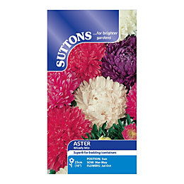 Suttons Aster Seeds, Milady mix