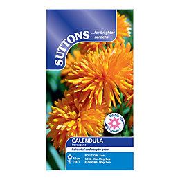 Suttons Calendula Seeds, Porcupine Mix