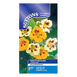 Suttons Nasturtium Seeds, Ladybird Mix