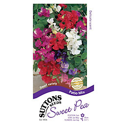 Suttons Sweet Pea Seeds, Patio Mix