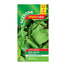 Suttons Speedy Veg Leaf Salad Seeds, Californian Mix