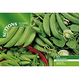 Suttons Delikett Seeds, Non Gm