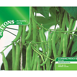 Suttons Climbing French Bean Seeds, Blue Lake Mix