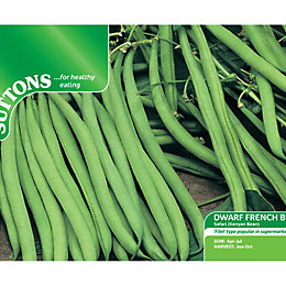 Suttons Dwarf French Bean Seeds, Safari Mix