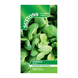 Suttons Spinach Seeds, F1 Amazon Mix