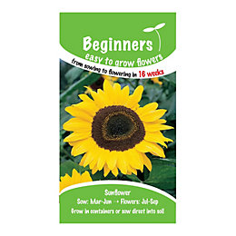 Suttons Beginners Sunflower Seeds, Giant Yellow Mix