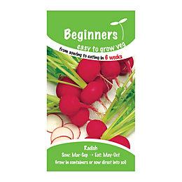 Suttons Beginners Radish Seeds, Scarlet Globe Mix