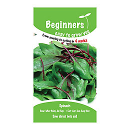 Suttons Beginners Spinach Seeds, F1 Ready Mix