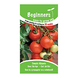 Suttons Beginners Tomato Seeds, Alicante Mix