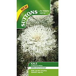 Suttons Kale Seeds
