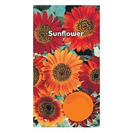 Suttons Sunflower Seeds
