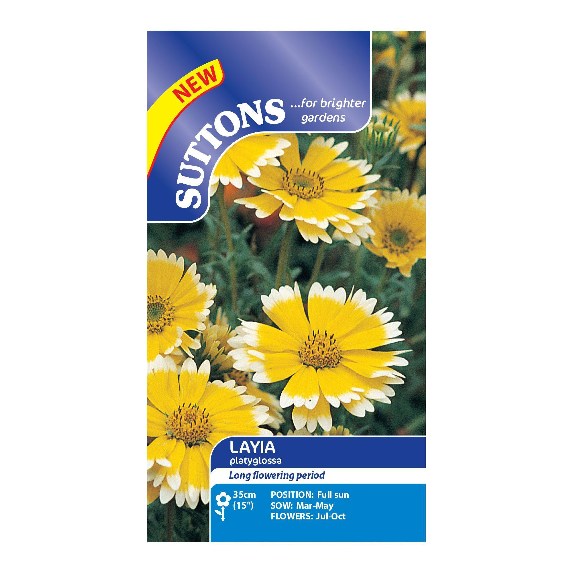 Suttons Layia Seeds, Platyglossa