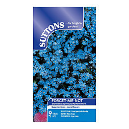 Suttons Forget-me-not Seeds, Spring symphony blue