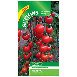 Suttons Tomato Seeds, Sweet aperitif