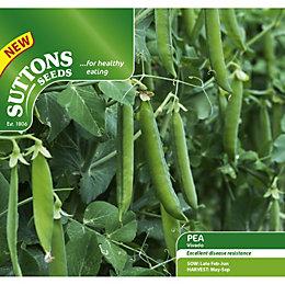 Suttons Vivado Seeds, Non GM