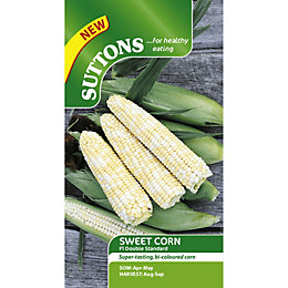Suttons Double Standard Seeds, Non Gm