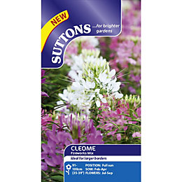 Suttons Fireworks Mix Seeds, Non Gm