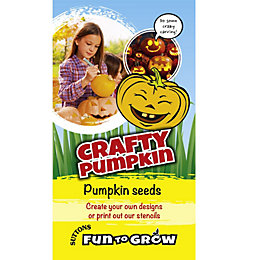 Suttons Fun to Grow Pumpkin Seeds