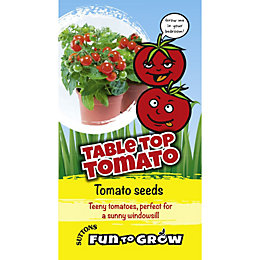 Suttons Fun To Grow Tomato Seeds