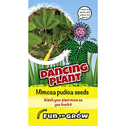 Suttons Fun to Grow Seeds