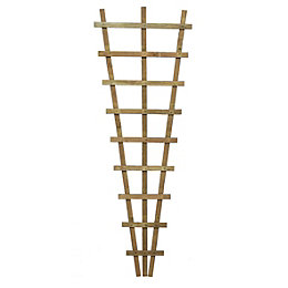 Traditional Fan Trellis (H)1.83M(W)0.66 M
