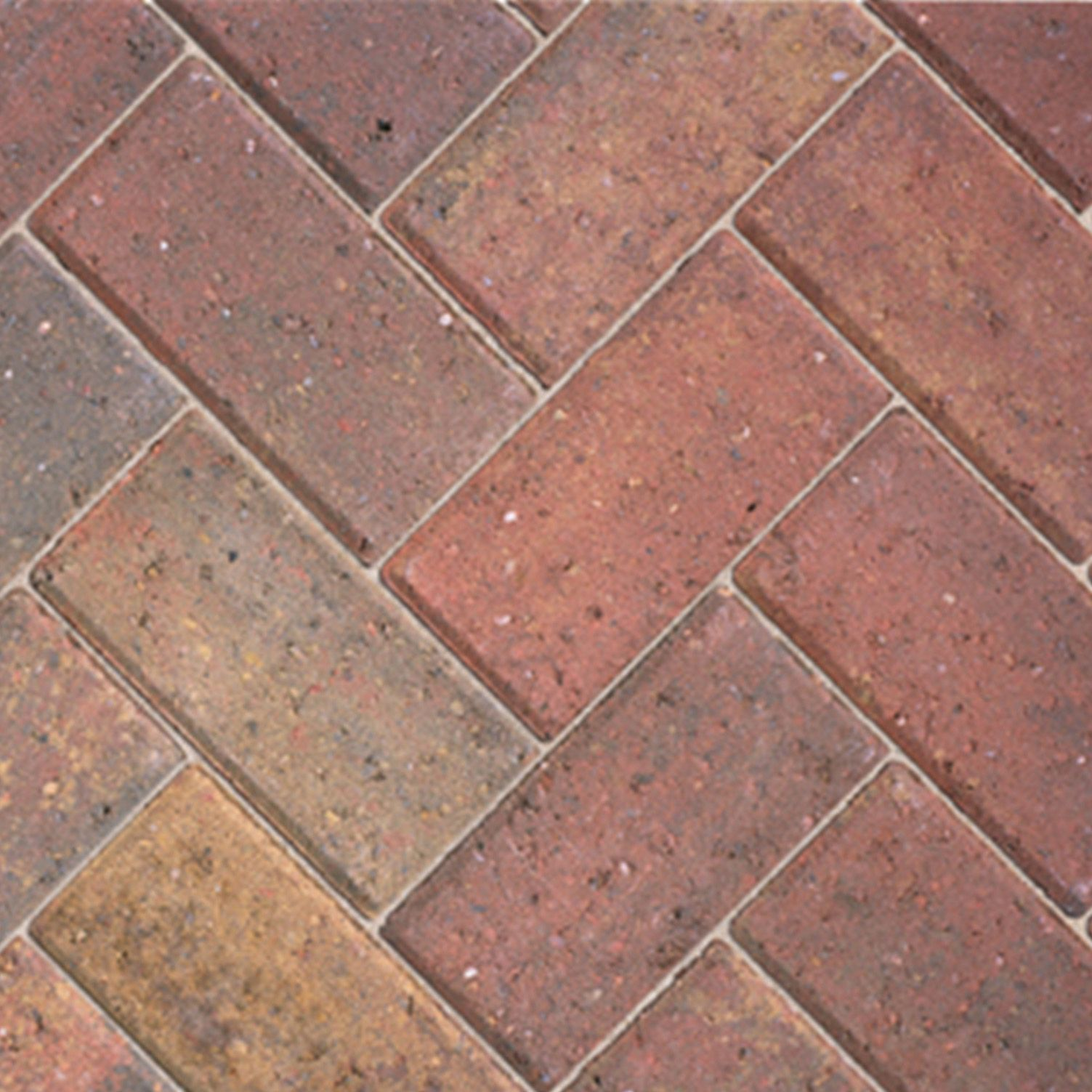 Autumn Driveway Block Paving L 200mm W 100mm Pack Of