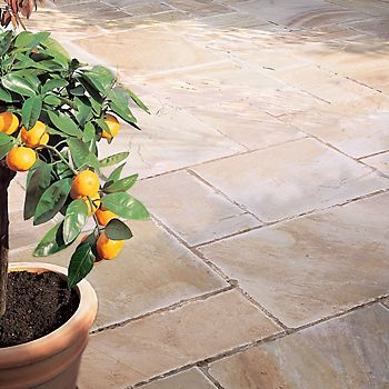 Natural sandstone patio with potted fruit plant