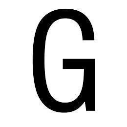 Black PVCu House Letter G